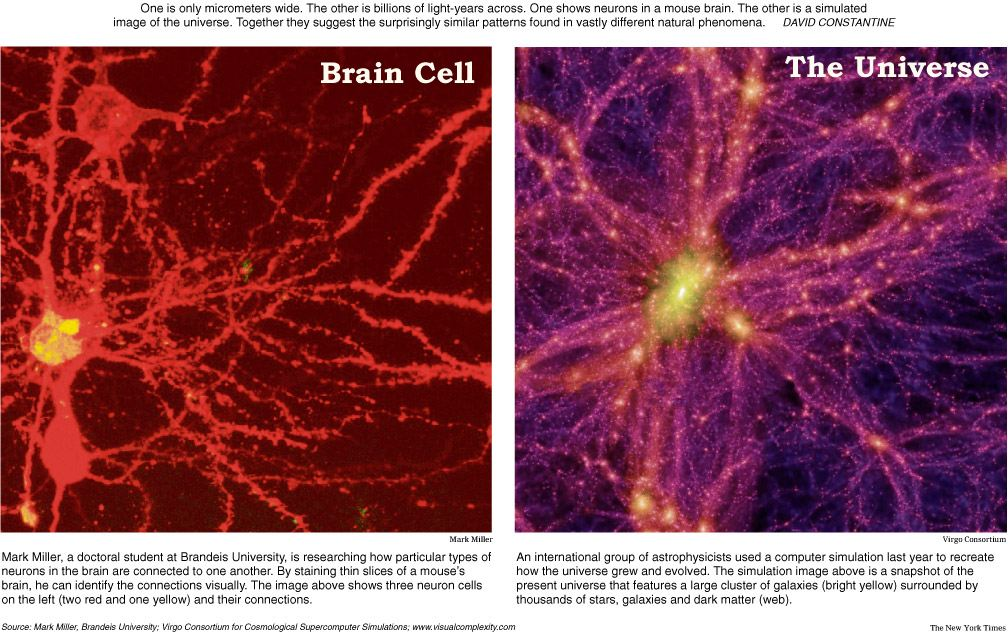 neuron-galaxy